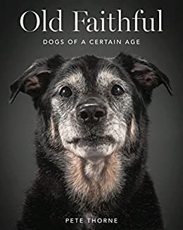 Old Faithful: Dogs of a Certain Age by [Thorne, Pete]