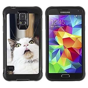 ZETECH CASES / Samsung Galaxy S5 SM-G900 / LOL FUNNY CAT / LOL divertido del gato / Robusto Caso Carcaso Billetera Shell Armor Funda Case Cover Slim Armor