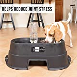 OurPets Comfort Diner Elevated Dog Food Dish