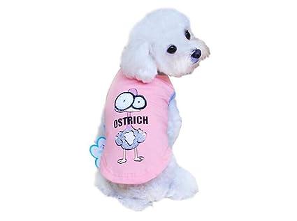 Wangshihao Ropa para Mascotas Que Xiong Bomei Ropa De Peluche VIP Cachorros De Perro Pequeños Y