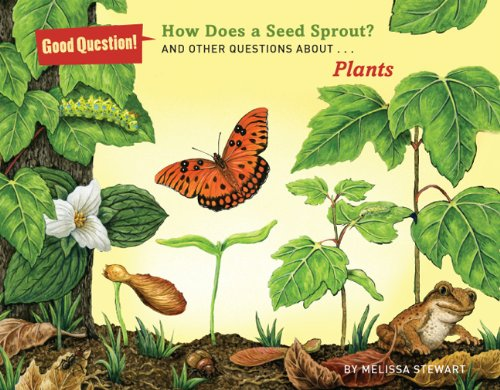 How Does a Seed Sprout?: And Other Questions About Plants (Good Question!)