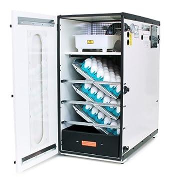 fila shoes gqf 1202 incubators for babies