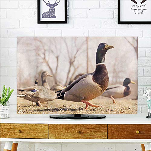 aolankaili Protect Your TV Wild Plum Deer Protect Your TV W25 x H45 INCH/TV 47