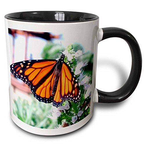 3dRose 3dRose Monarch Butterfly - Two Tone Black Mug, 11oz (mug_1106_4), , Black/White
