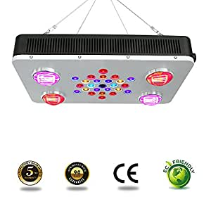 BloomBeast C525 525w COB LED Grow Lights bulbs Full Spectrum 13-Band and Dimmable Seedling/ Veg/ Flower/ Bloom for Indoor Plants