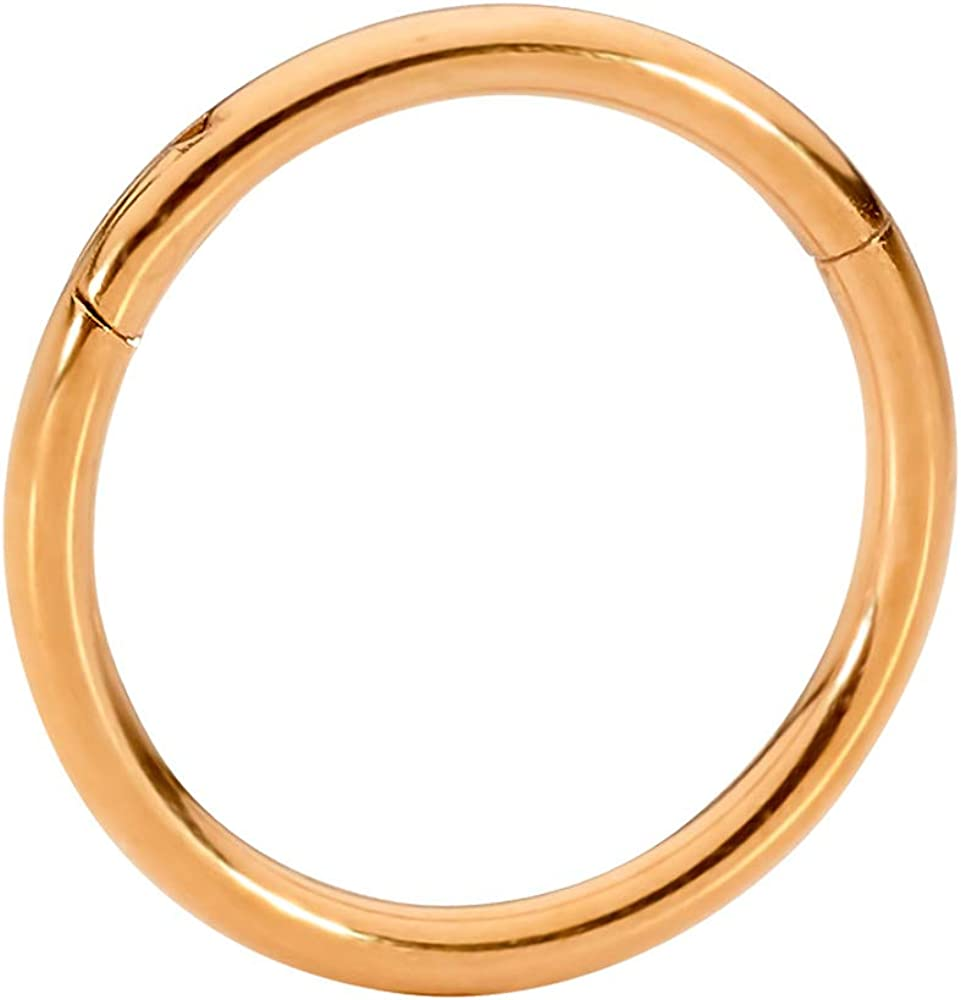 12G Sold Individually 18G 10G 365 Sleepers G23 Titanium 20G 8G Hinged Seamless Segment Ring Body Piercing 14G 16G