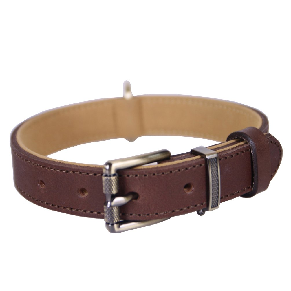 Brown L, Neck(15-19 IN) Brown L, Neck(15-19 IN) Tellpet  Full-Grain Leather Padded Dog Collar, Brown, Large