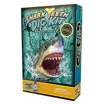Shark Tooth Dig Kit - Dig Up 3 Real Shark Teeth Fossils!