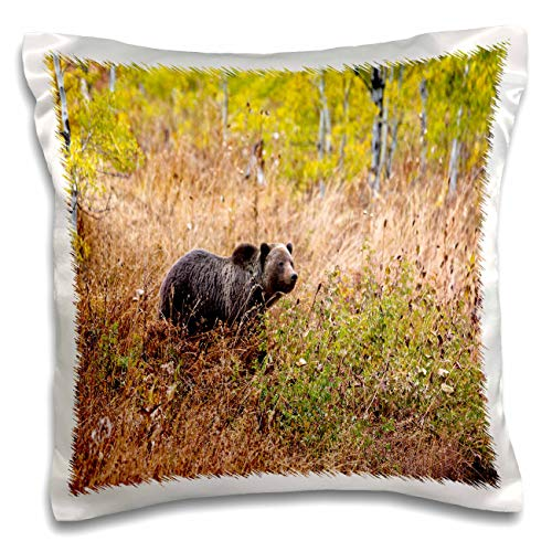 3dRose Mike Swindle Photography - Wildlife - Grizzly Bear Walking in Brush - 16x16 inch Pillow Case ()