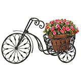 Riacenst 13185 Basket Iron Antique Tricycle Old Fashion Style Home Yard Garden Decor Gift Bicycle Plant Stand, Multicolor