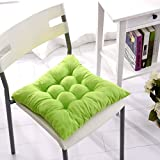 AVI Microfibre Chair Cushion Seat Pads Seat Cushion Indoor Outdoor Dining Home Office Garden Decor-18x18 (Mint Green)