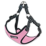 Voyager Step-In Flex Dog Harness - All Weather