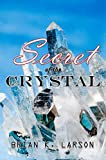 Secret of the Crystal (Time Travel)
