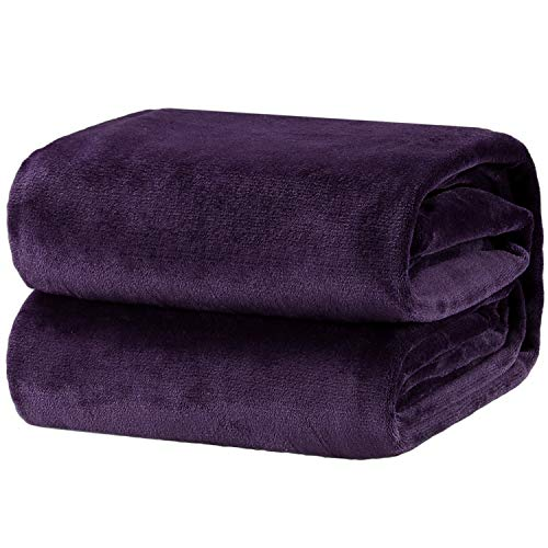 Bedsure Flannel Fleece Luxury Blanket Purple Queen Size Lightweight Cozy Plush Microfiber Solid Blanket