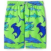 Lands' End Boys Printed Swim Trunks