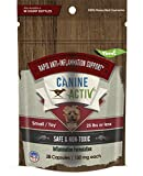 CanineActiv Endurance and Recovery Supplement Providing Anti-Inflammatory Support for Hips, Joints, Ligaments, Muscles and More.Small/Medium/Large Breeds