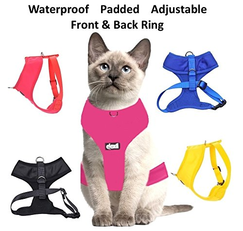 Dexil Color Coded Cat Harness Warning Alert Vest Padded and Water Resistant Yellow ADOPT ME (L-XL) by Dexil Limited (Image #2)