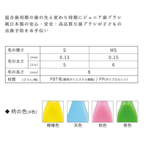 艶白 Tsuyahaku Junior Soft, BPA Free Bristles Kids(6~12 Years Old) Toothbrush - Compact Head, Pack of 4, Color Variety - Made in Japan