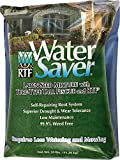 WaterSaver Grass Seed Mixture With Turf-Type Tall Fescue - Used to Seed New Lawn and Patch Up Jobs -...