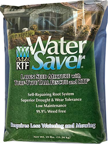 WaterSaver Grass Seed Mixture With Turf-Type Tall Fescue - Used to Seed New Lawn and Patch Up Jobs - Grows in Sun or Shade - 25 lbs - Covers 1/10 Acre (Best Turf Type Tall Fescue)