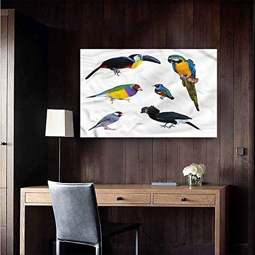 Gabriesl Waterproof Art Wall Paper Poster Birds Tropical Parrot Java Sparrow Restaurant Wall Size : W20 x H16 (Java Wallpaper)