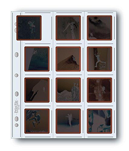 Printfile Top Load Holds 12 21/4 X 21/4 Slides 100 Pack - Printfile 22512HB100 by Print File