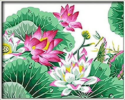 Amazoncom Lotus Flower Diy Painting By Mumber Kits Picture On Wall