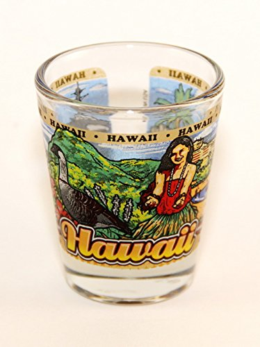 Hawaii State Wraparound Shot Glass (Hawaii Glass)