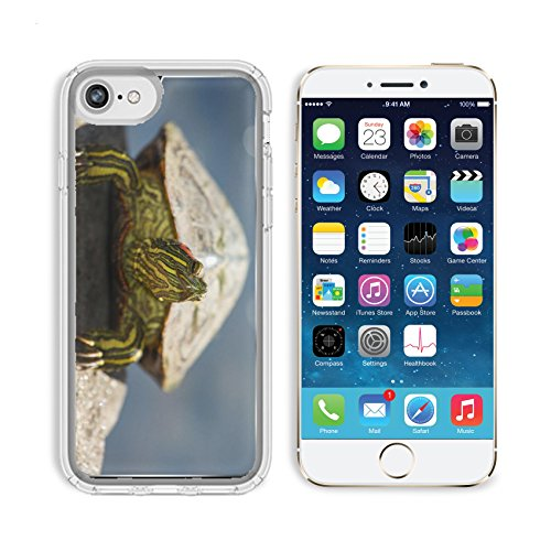 MSD Premium Apple iPhone 6 iPhone 6S Clear case Soft TPU Rubber Silicone Bumper Snap Cases IMAGE ID 33694598 Red eared Slider pond turtle Trachemys scripta elegans basking on a rock during the Spring
