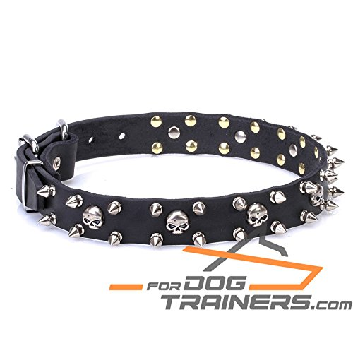 Black fits for 25 inch dog's neck size25 inch 'Buccaneer Legacy' Black Leather Dog Collar with Chrome Plated Spikes and Small Skulls  1 inch (25 mm) wide