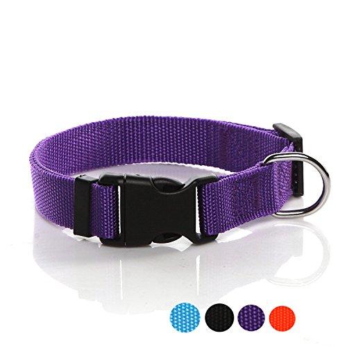 SALO Durable Nylon Dog Collar, Adjustable Dog Collars for Medium Large Dogs, 1 Inch Wide (Purple)