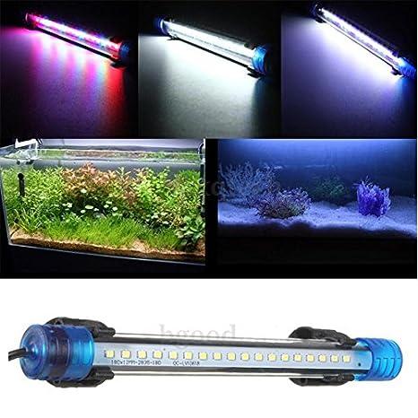 Tyche Downlight sumergible productos de acuario tropical resistente al agua LED barra de luz del tanque del acuario de peces 3w 30cm: Amazon.es: Hogar