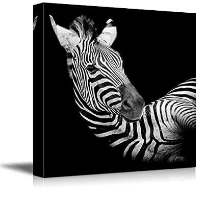 Canvas Prints Wall Art - A Headshot of a Burchell Zebra Wild Animal Photograph | Modern Wall Decor/Home Decoration Stretched Gallery Canvas Wrap Giclee Print & Ready to Hang - 16