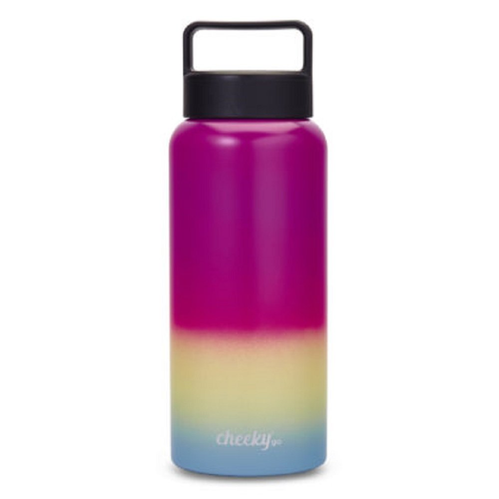 6197fbe881 Amazon.com : Cheeky Go Insulated Stainless Steel Bottle with Screw Lid :  Sports & Outdoors