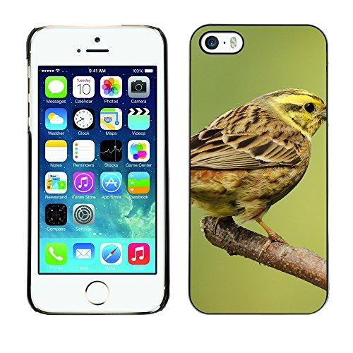 Premio Sottile Slim Cassa Custodia Case Cover Shell // F00004608 oiseau jaune // Apple iPhone 5 5S 5G
