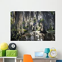 Bayou Swamp Scene with Wall Mural by Wallmonkeys Peel and Stick Graphic (60 in W x 40 in H) WM221590