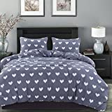 Smoofy 3 Piece Love Heart Duvet Cover Set, Microfiber Durable Reversible Design Stylish Bedding Duvet Cover with Hidden Zipper Closure + 2 Pillow Shams(Queen)