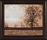 Choices by Susie Boyer 20x24 Tree Rocks Sepia James Williamson Quote Inspirational Motivational Framed Art Print Picture