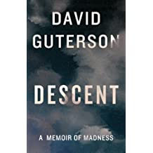 Descent: A Memoir of Madness (Kindle Single)