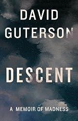 Descent: A Memoir of Madness (Kindle Single)