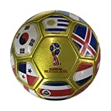 (US) Icon Sports FIFA 2018 World Cup Russia Official Souvenir Size 5 Soccer Ball
