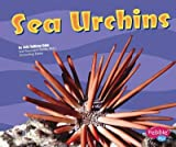 Sea Urchins (Under the Sea (Capstone Library))