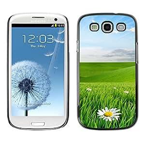PC/Aluminum Funda Carcasa protectora para Samsung Galaxy S3 I9300 Green eye protection landscape / JUSTGO PHONE PROTECTOR