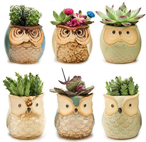 6pcs Owl Pot 2.5 Inch Ceramic Flowing Glaze Base Serial Set Succulent Plant  Cactus  Flower Pot Container Planter Small Bonsai Mini Pots With A Hole  Gife Idea