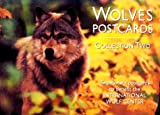 Wolves Postcard Collection Two, International Wolf Center Staff, 0896582566