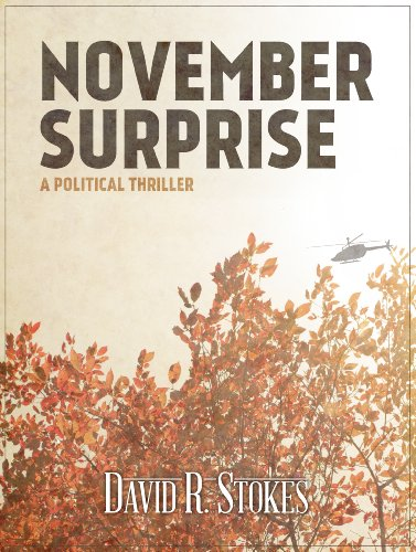T.G.I.F! Here's Your Kindle Daily Deals For Friday, November 20  Featuring Bestselling Author David R. Stokes' November Surprise: A Political Thriller [Novella]