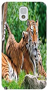 Fantastic Faye Cell Phone Cases For Samsung Galaxy Note 3 No.3 The Special Design With Cute Foolishly Gray Pure Tiger On The Water Grass
