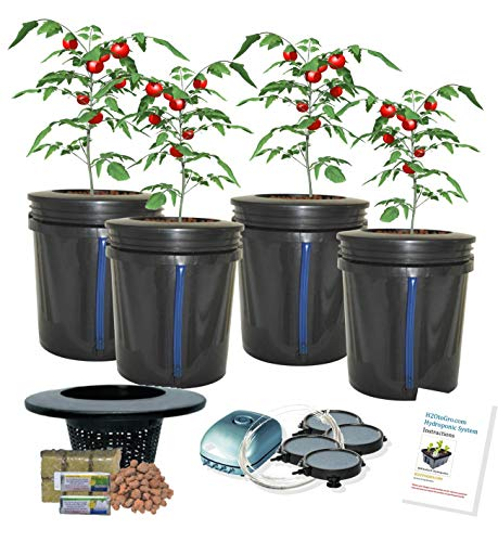 (DWC 4-site Hydroponic Bucket BUBBLER Grow kit)