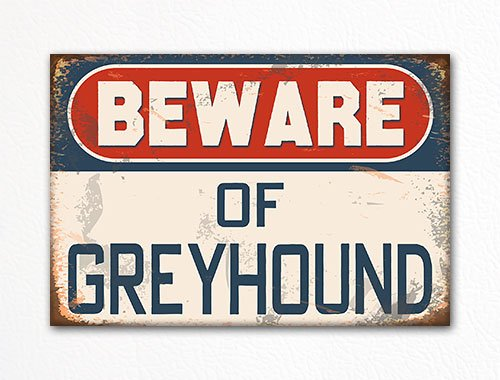 Beware of Greyhound Dog Breed Cute Refrigerator Magnet (Greyhound Dog Magnet)