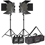 Neewer 2-Pack Dimmable Bi-color 660 LED Video Light and Stand Lighting Kit with Large Carrying Bag for Photo Studio Video Photography